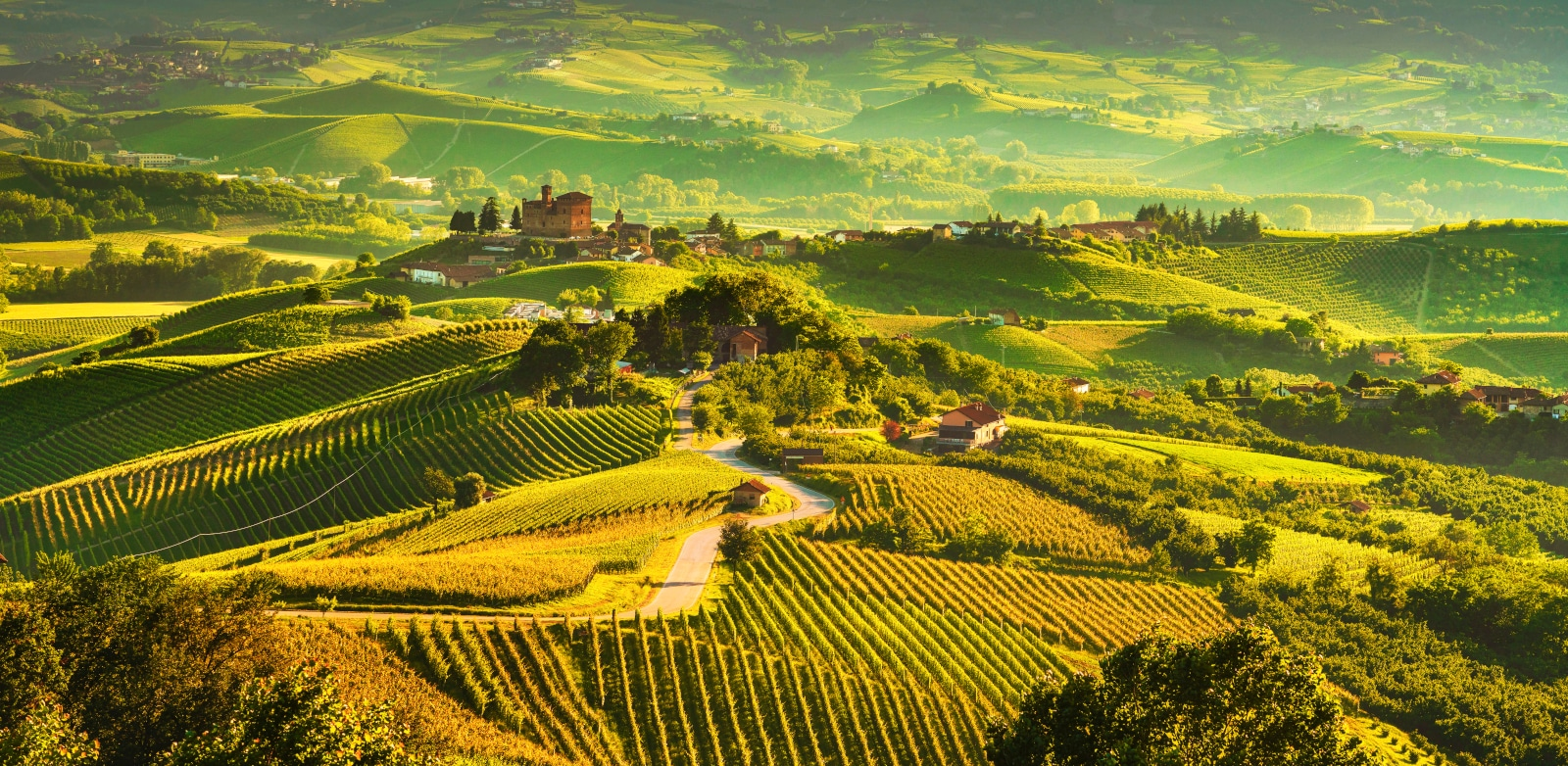 Where Does Nebbiolo Come From