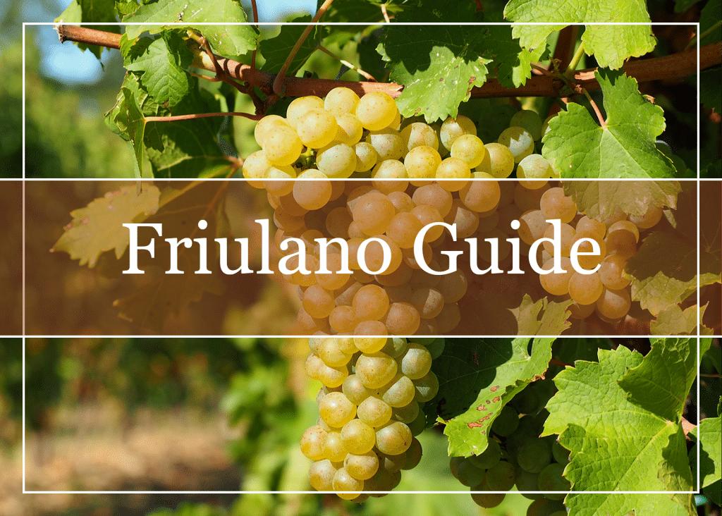 Friulano Wine Guide