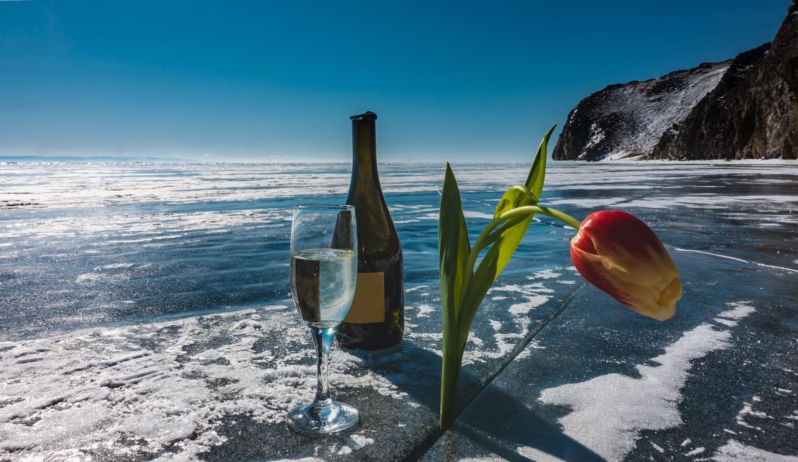 Frozen Wine Bottle