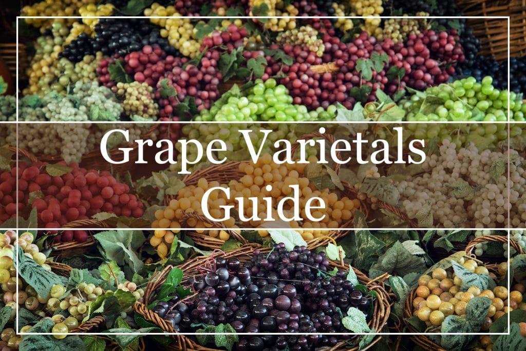 Grape Varietals Guide