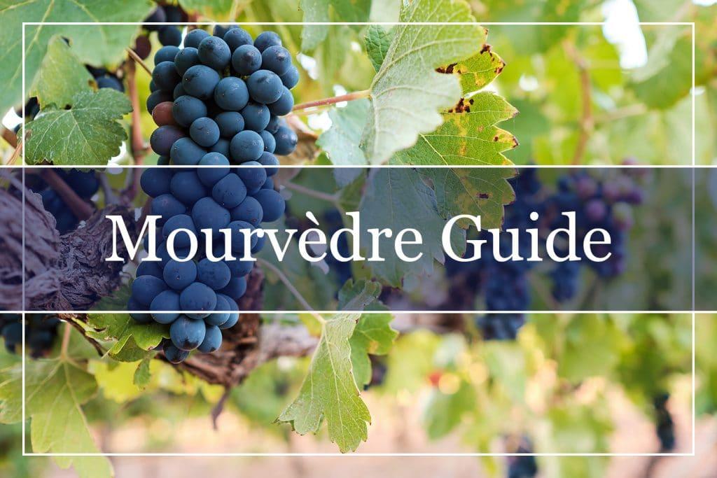 Mourvèdre Guide