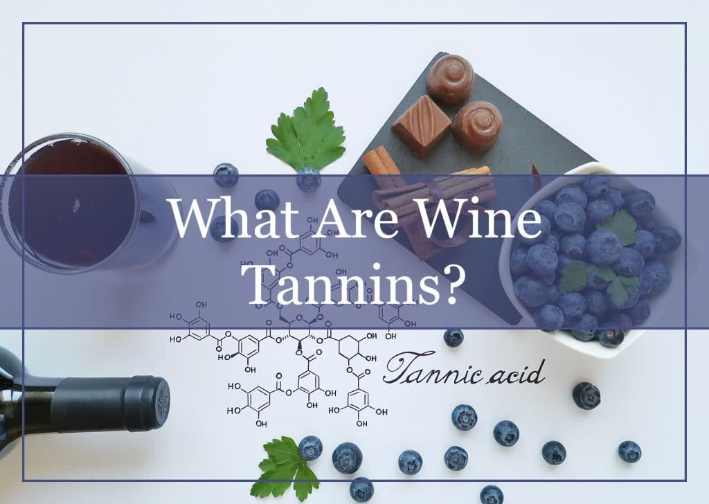 What Are Wine Tannins