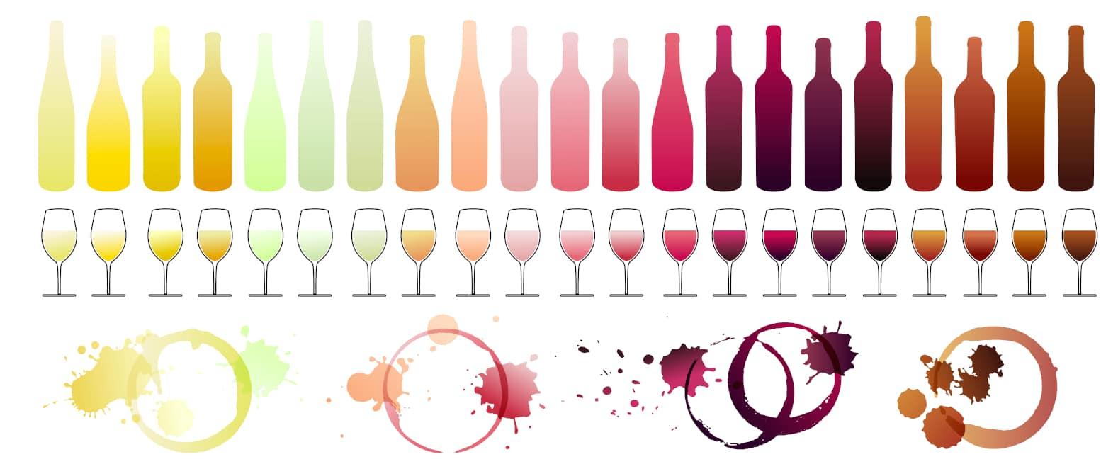 Wine Color Gradients