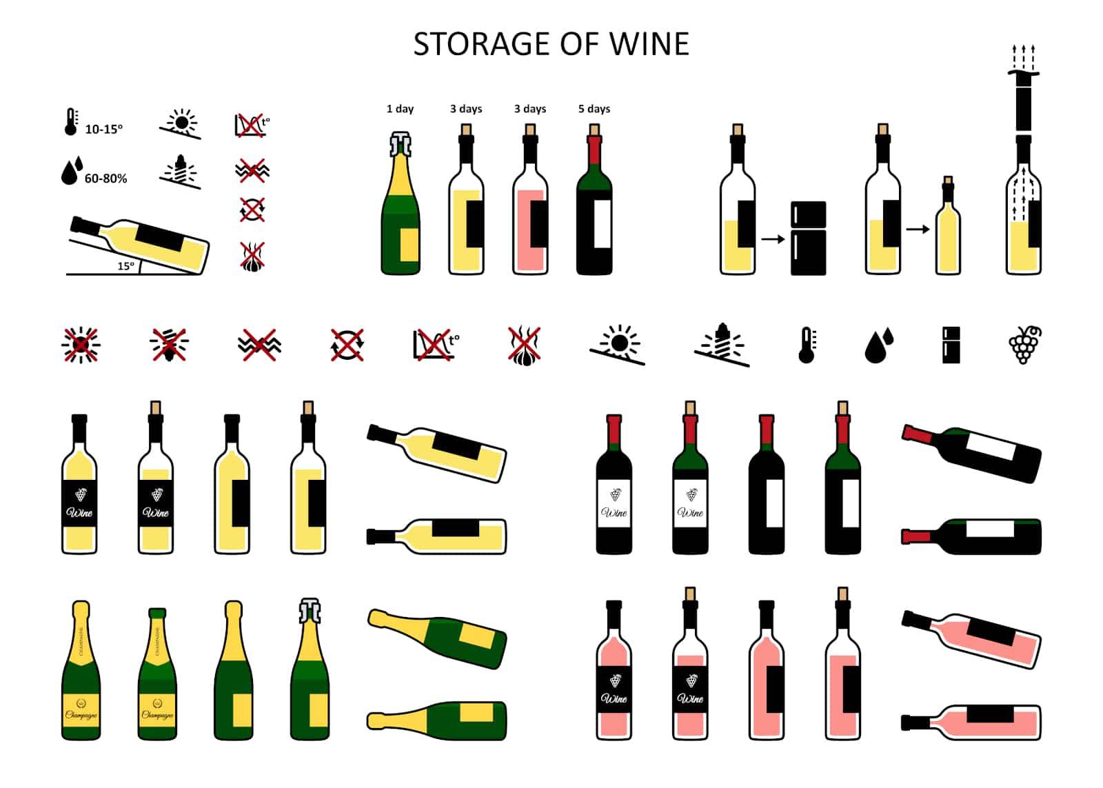 Wine Storage Infographic
