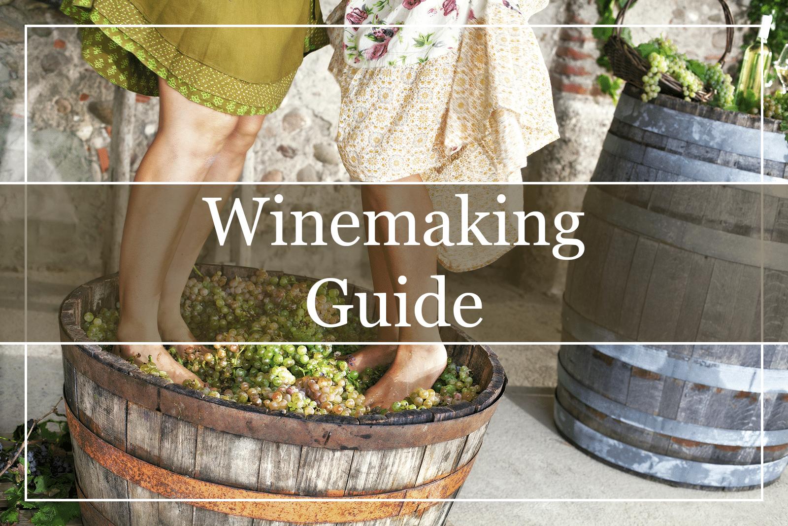 Winemaking Guide Enology