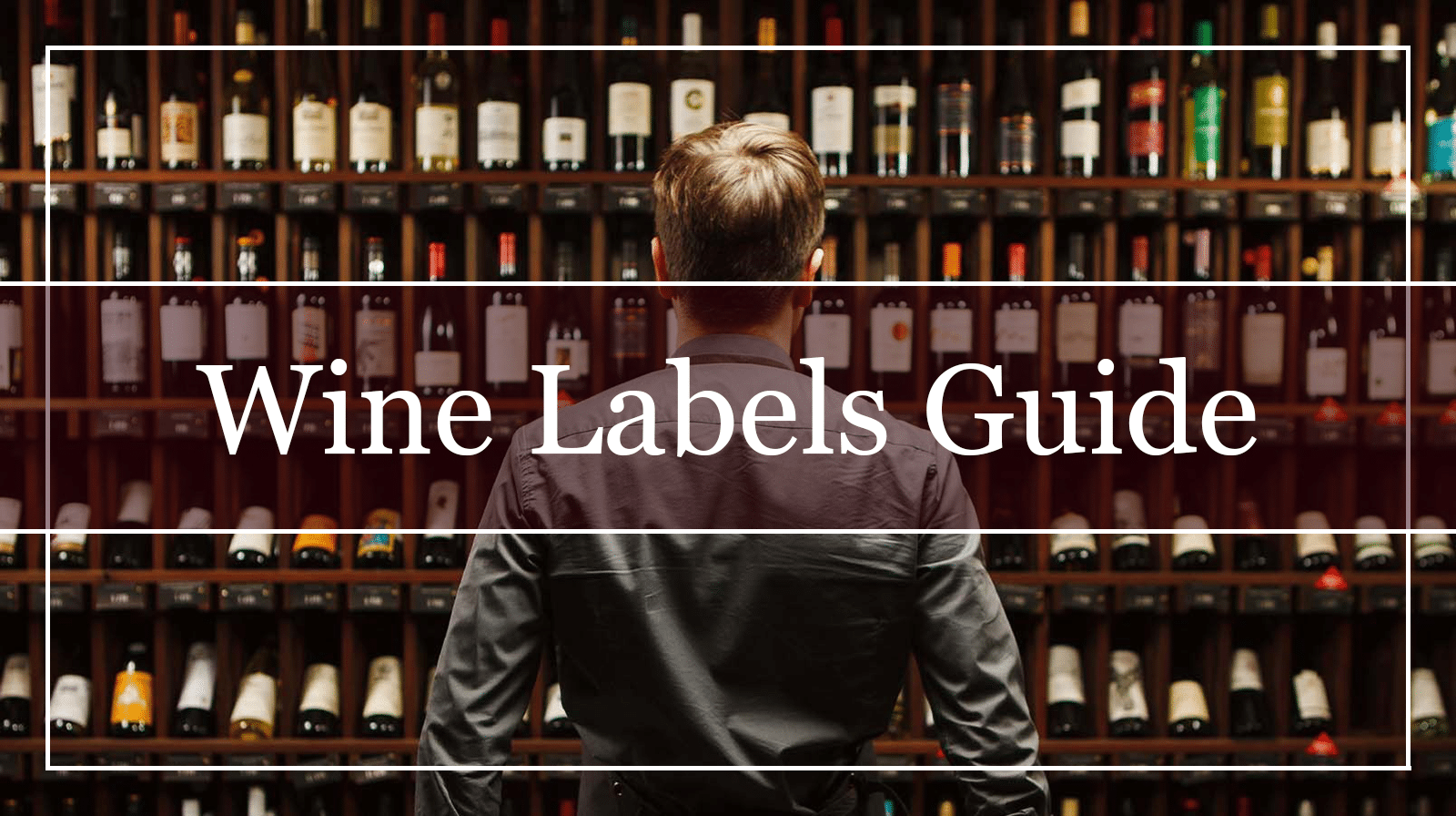 Wine Labels Guide Featured