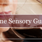 Wine Sensory Guide Featured